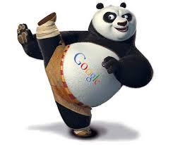 serverin-google-panda